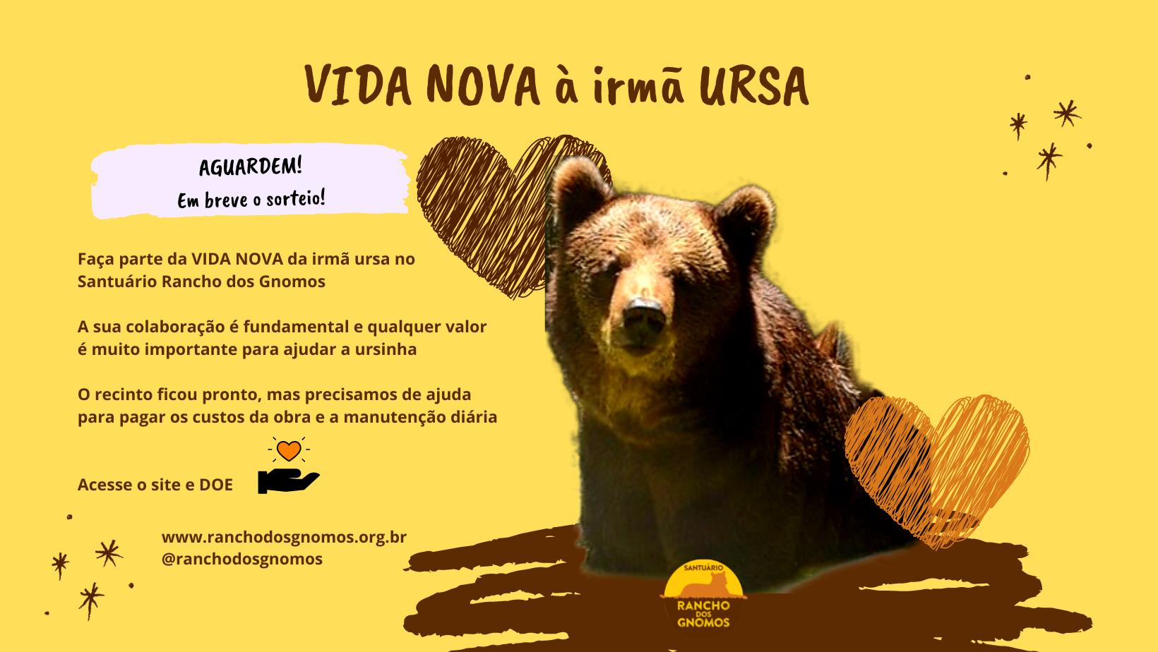 Arte irmã ursa substituir site – ok